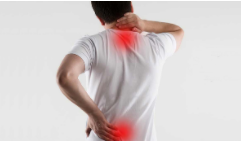 Palmitoylethanolamide To Enable Quick Relief From Chronic Pain