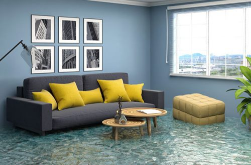 How Can The Water Damage Restoration Help You?