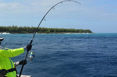 Get Your Clothing Bundle For Unforgettable Fishing Tours