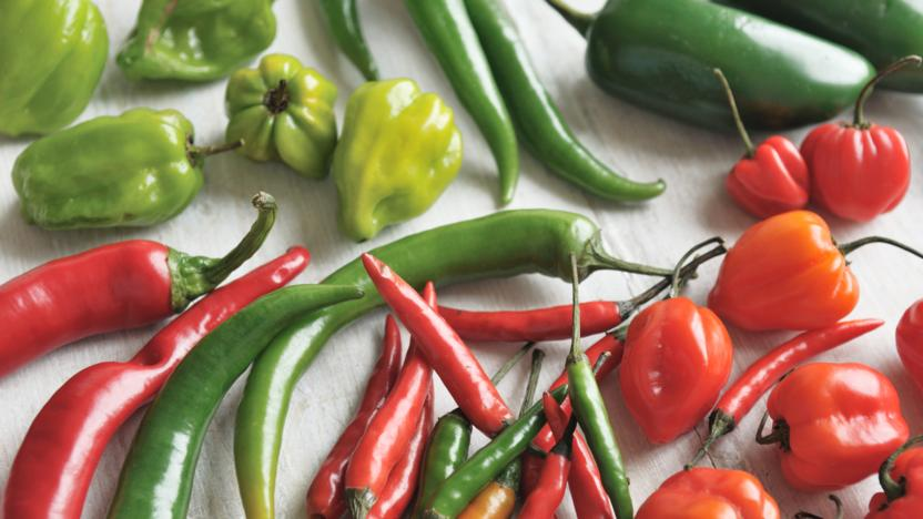 The Way To Prepare Chile Peppers, Chile Pepper Recipe Index