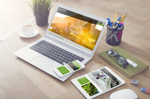 Beginner's Guide: How To Learn Web Designing In Your Home