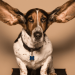 Ear Mites In Dogs And Cats: Top 5 Sure Fire Remedies That Work